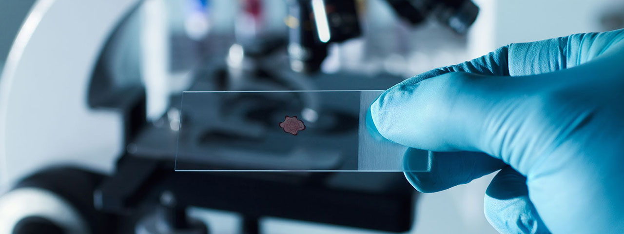 Texas GEAR UP - Histotechnologist/ Histologic Technician