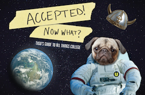 Accepted! Now What?